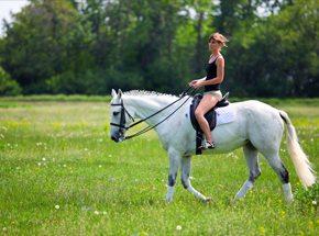 Верховая езда с фотосессиейПодарочные сертификаты<br>Урок верховой езды пройдет на крытом или открытом манеже. Опытный тренер научить вас седлать лошадь и управляться с ней.<br>Общение с животным подарит незабываемые эмоции. Надо будет обязательно повторить!<br>