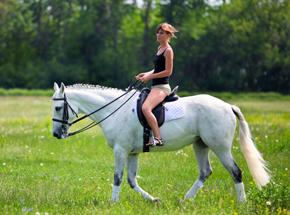 Конная прогулка для двоихПодарочные сертификаты<br>На лошади вы сможете прогуляться там, куда не доедете на автомобиле или не дойдете пешком! Послушный конь под седлом отправится туда, куда вам угодно - от аллей и тропинок до крутых подъемов и спусков! Не забудьте на прощание угостить коня сахарком - лошади любят лакомства.<br>