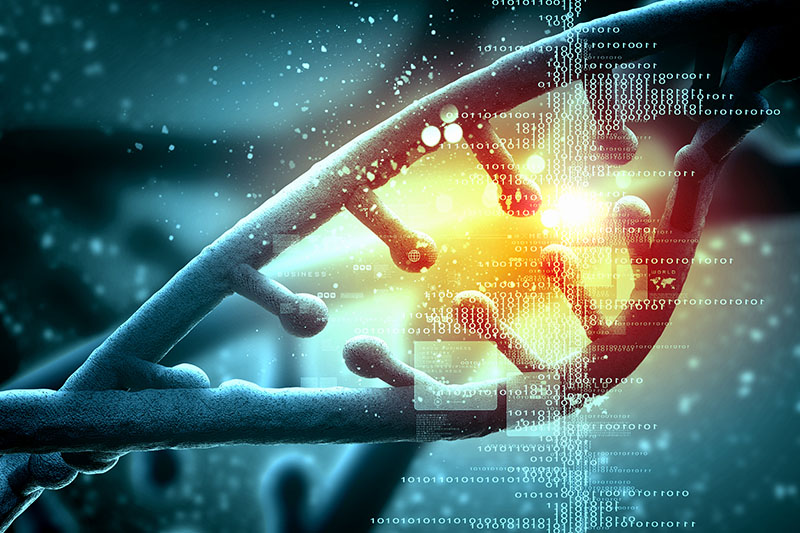 Генетический тест - Подарочный сертификат от P.S.BOX